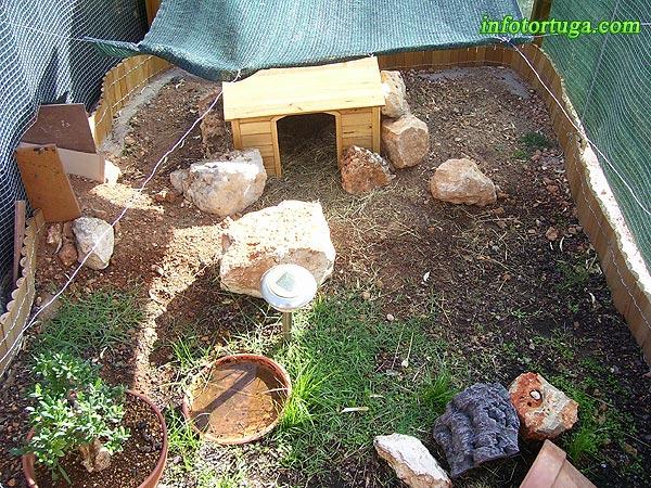 Como construir un estanque para tortugas great es que - Estanque para tortugas ...
