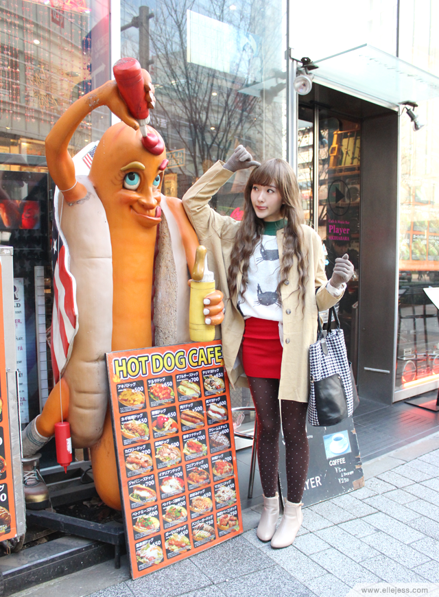ELLE AND JESS: Christmas 2013 in Akihabara