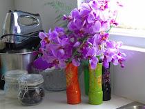 Jual Anggrek Fresh  Potong (Kebun Sendiri) danTanaman Hias