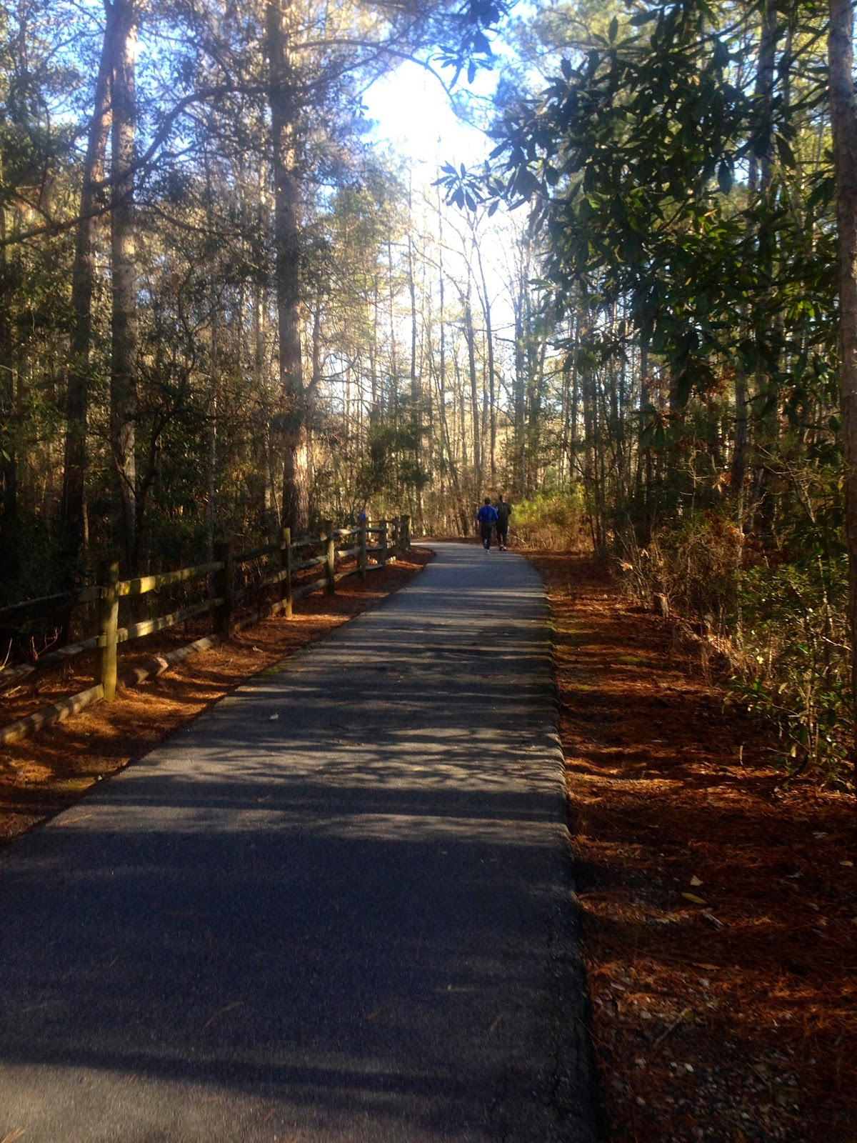 The Calloway Gardens Marathon...a training run with a medal at the ...