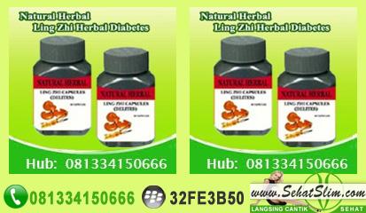 Herbal Diabetes Ling Zhi