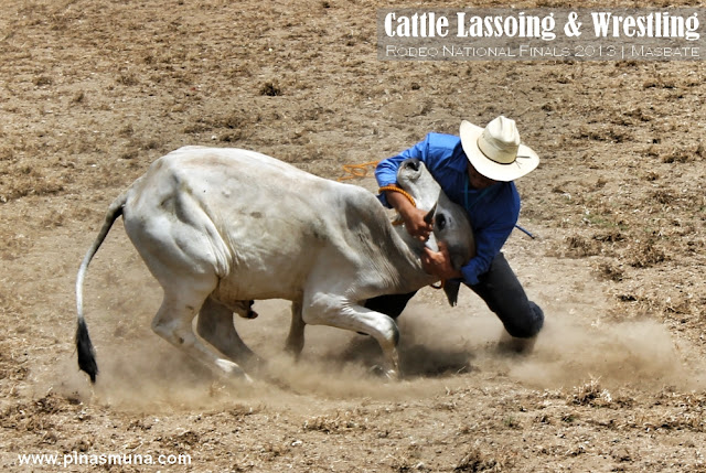 Cattle Lassoing & Wrestling on Foot Rodeo Festival 2013 in Masbate
