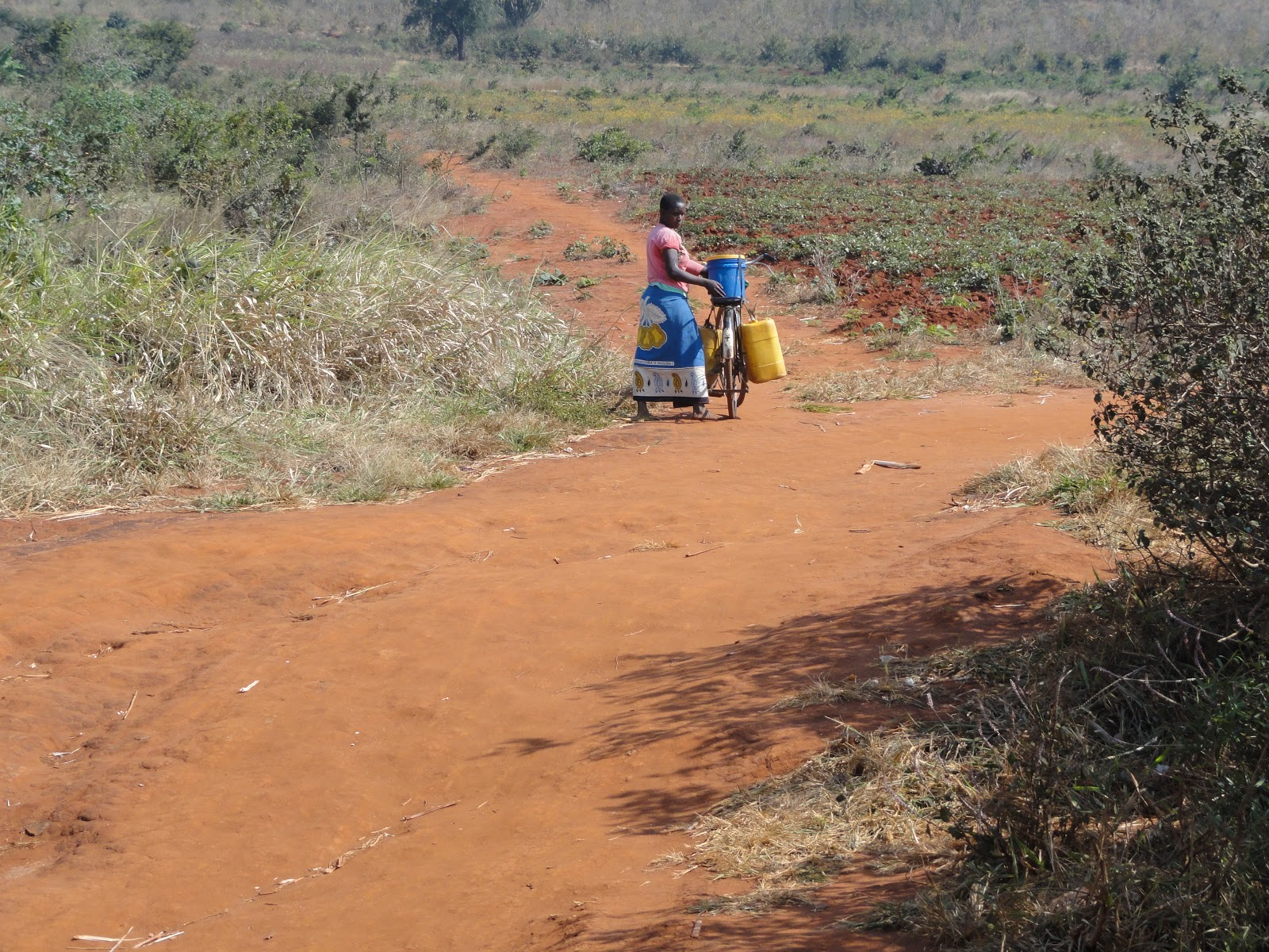 "tanzanian land grabbing essay Curbing tanzania's ""land grabbing race tanzanian ngo land rights research and resources institute said that of the 1,825 general land disputes reported in."