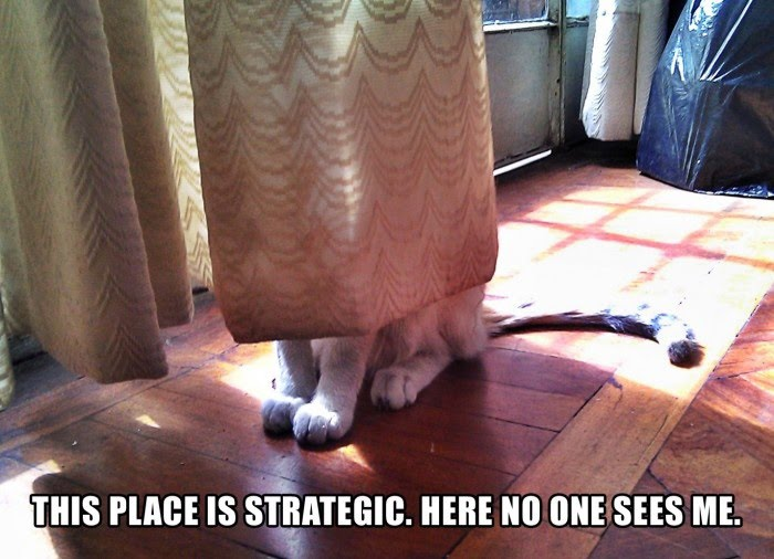This Place Is Strategic - Here No One Sees Me
