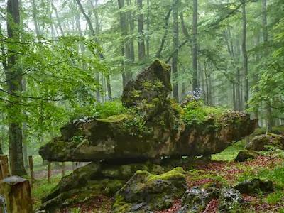 Las formaciones rocosas componen las figuras encantadas