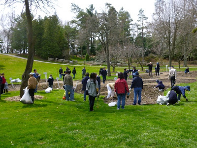 BRG rose garden gets spring cleanup with dozens of Tzu Chi volunteers filling bags with weeds.