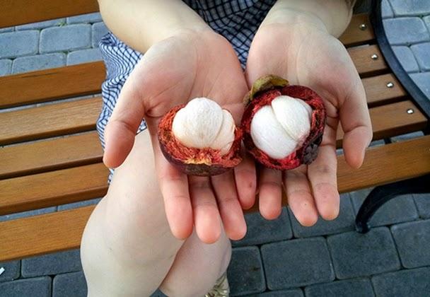 ekspor buah manggis indonesia ke new zealand