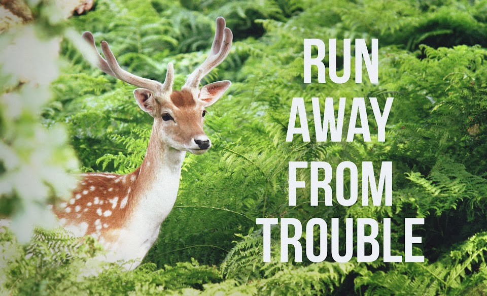Run Away From Trouble