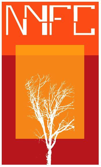 NYFC Logo Proposal
