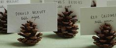 marcador de lugar na mesa com pinhas