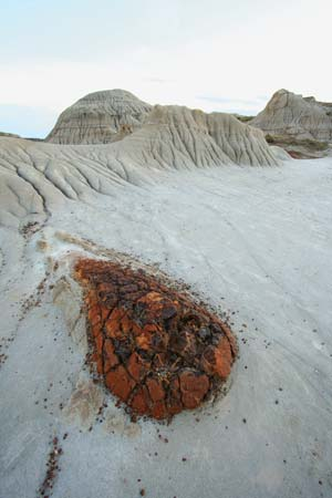 Landforms in the World: Erosion Landform ( 16. Pediment )