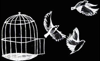Nadie es libre