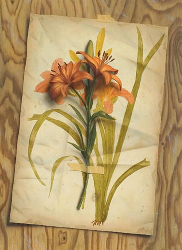 flores-comerciales-al-oleo