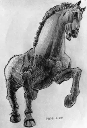 Equus di Serpiero