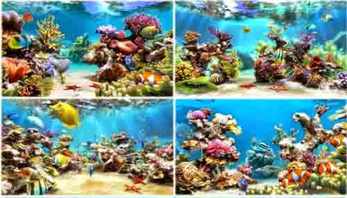 Download Wallpaper Animasi Bergerak Virtual Aquarium