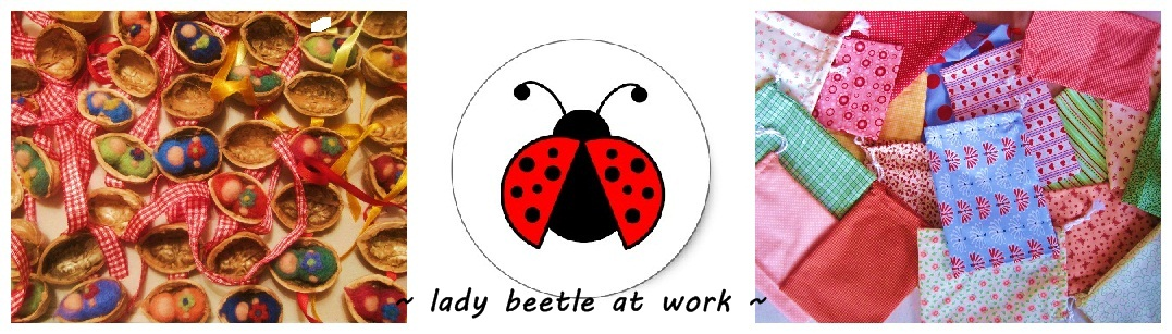 ~ lady beetle at work ~