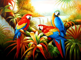 GALERIA DE PAJAROS