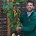 Φυτό παράγει ντομάτες και πατάτες μαζί!
