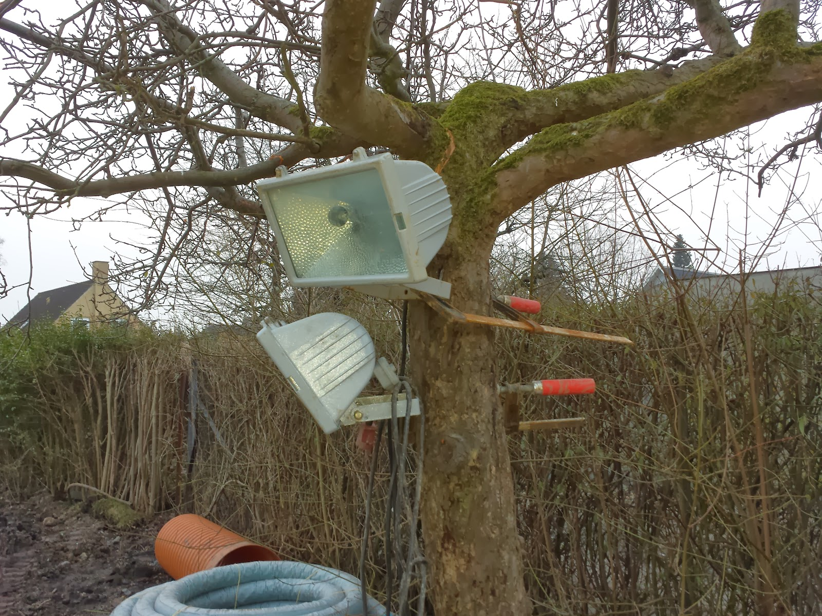 Huscompagniets lamper