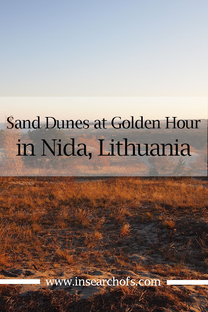 visiting the sand dunes in Nida, Lithuania at Golden Hour