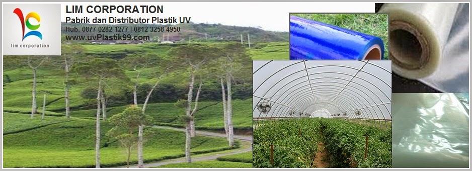 Pabrik dan Distributor Plastik UV (Ultra Violet)