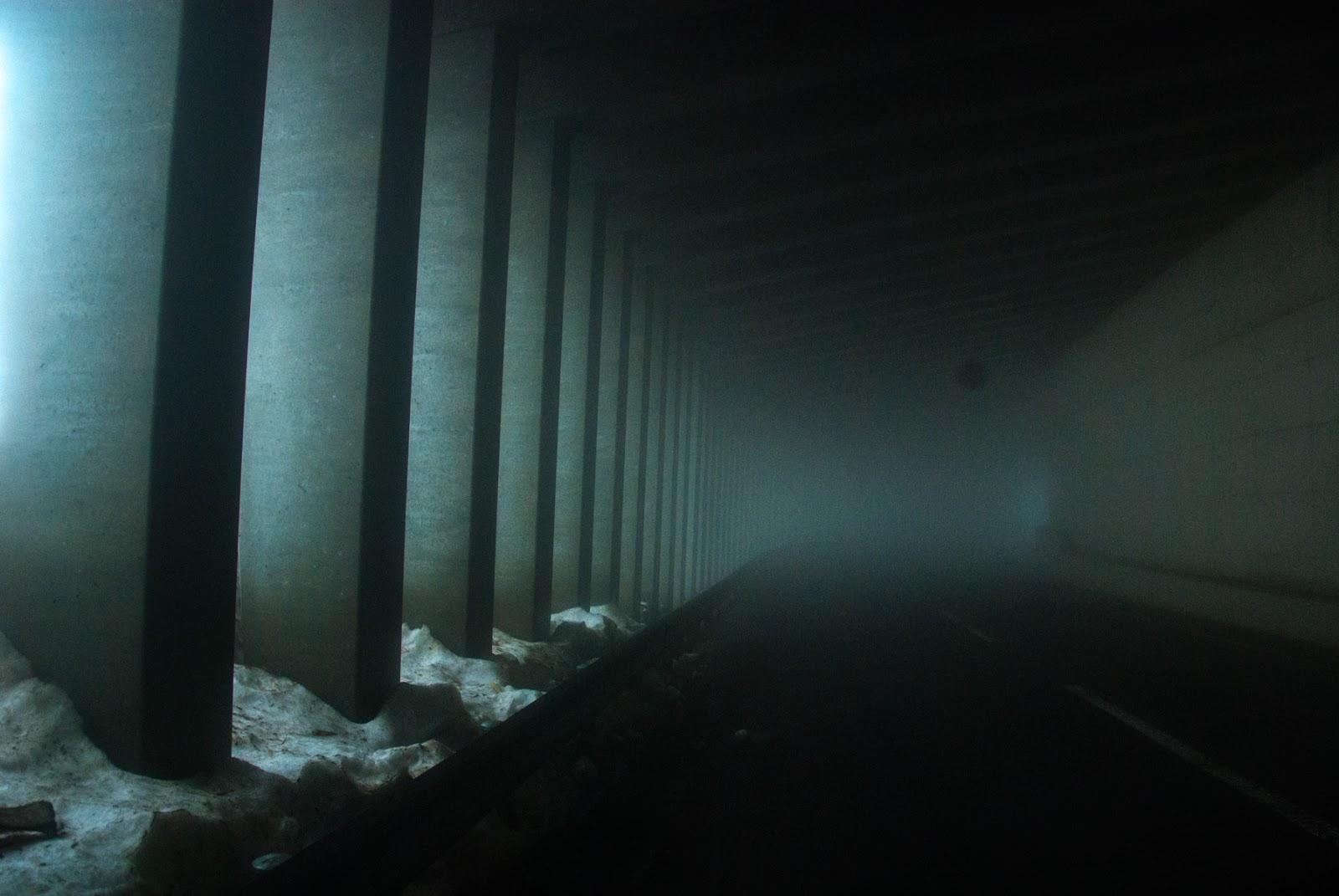 幻想的なトンネル