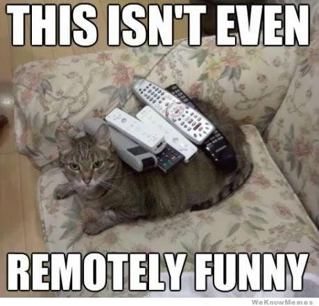 http://2.bp.blogspot.com/-IT0-f6ZZ_uc/UoP_fPFGenI/AAAAAAAAFD0/mV7dEt356nA/s1600/remotely-funny-cat.jpg