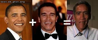 funny picture of Obama Schwarzenegger and Ted