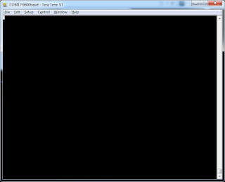 2_tera_term_main_window.png
