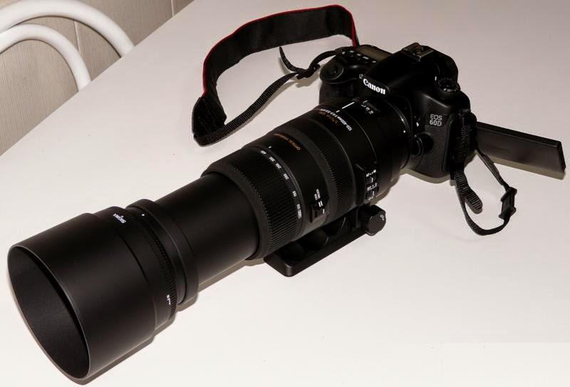 OBJETIVO 3 , SIGMA 70-300mm MACRO