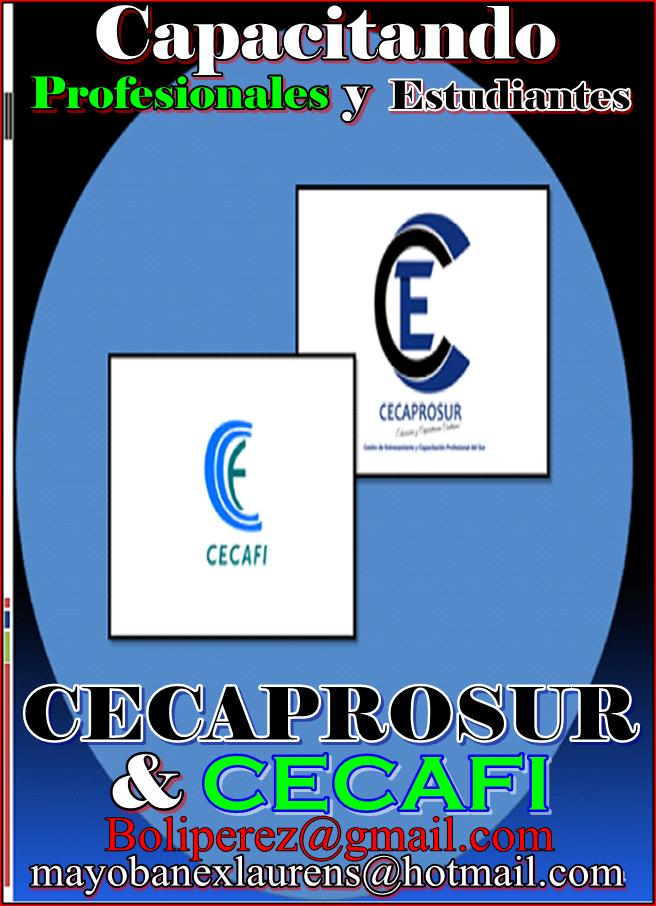 CECAPROSUR & CECAFI, Capacitando Profesionales y Estudiantes del Sur. 829-526-1687/809-776-8266