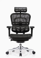 Ergo Elite Chair by Eurotech Seating