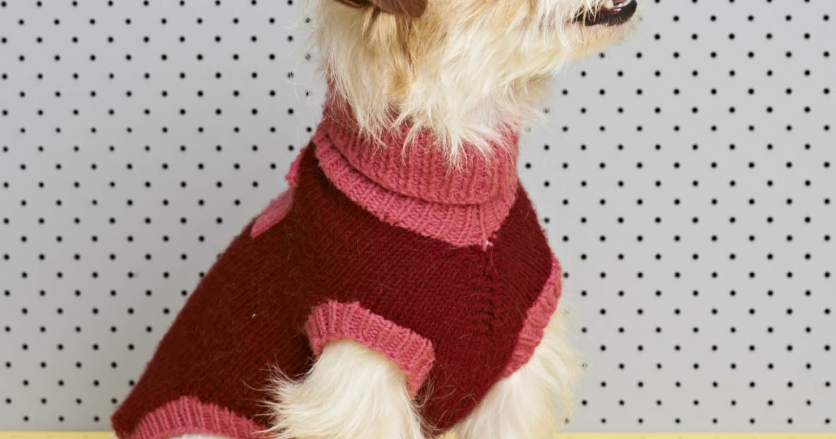 Knit Dog Coat Free
