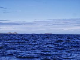 FORMACIÓN DE OCEANOS: INTERACTIVO