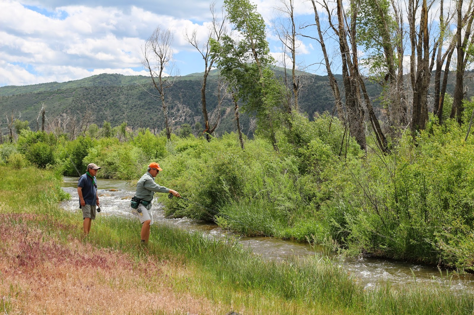 Fly+Fish+for+brown+trout+in+Colorado+with+Jay+Scott+Outdoors+12.JPG