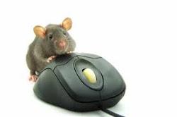 ... de ratones modernos...