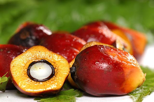 Palm-Fruit-Kernel