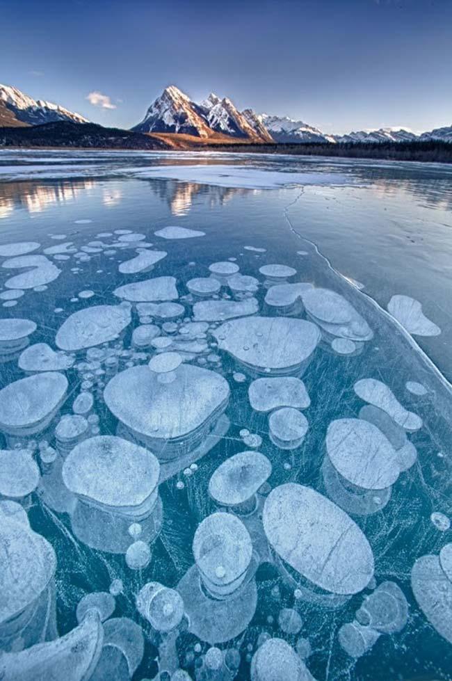 Burbujas de aire congelado, Abrahan Lake, Alberta, Canadá