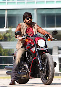 Bengal Tiger Ravi Teja photos gallery-thumbnail-4