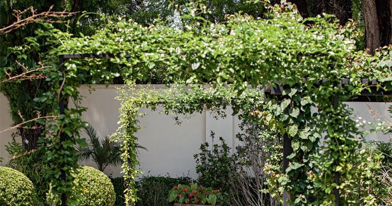 ideias para jardins gramados10 boas ideias de caminhos de jardins