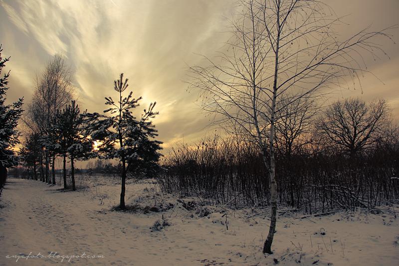 zima, śnieg, winter, anjafotografia