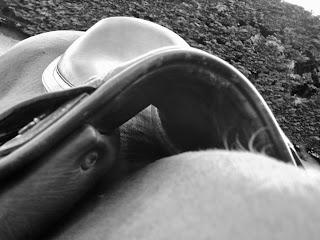 Quand la selle est posée sur le dos du cheval, on doit voir le jour de l'autre côté.