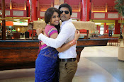 Thimmiri movie photos gallery-thumbnail-4