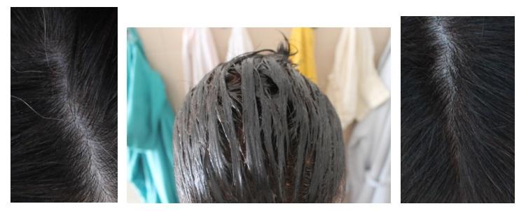 capelli bianchi garnier olia