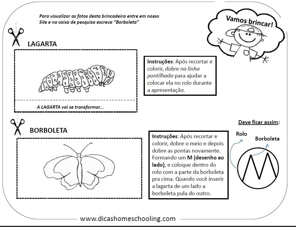Top DICAS Homeschooling: INSETOS Ensino Infantil Nossos Materiais WK12