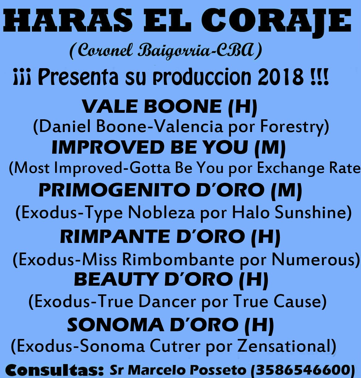 HS EL CORAJE - PROD 1 2020