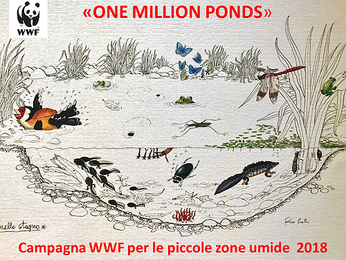 ONE MILLION PONDS