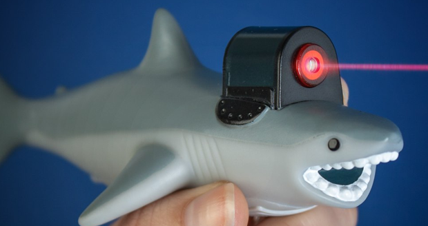 Shark With Frikin Laser Beam