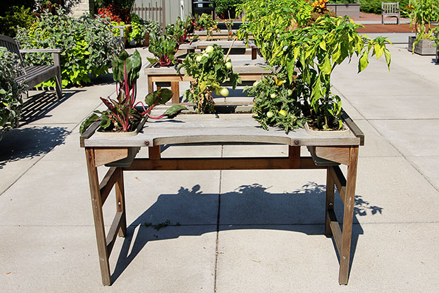 Handicap gardening table at the Franklin Park Conservatory Community Garden