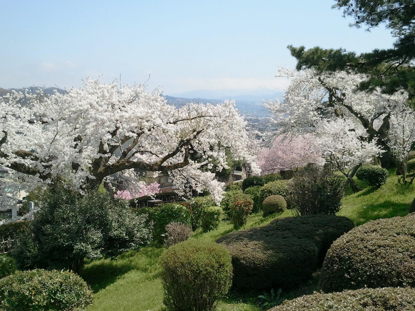 Tripping: Kanazawa Castle, Kenrokuen Garden